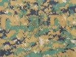 画像4: 米軍放出品,ウッドランド ピクセル カバーオール M (4)