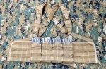 画像1: 米軍特殊部隊放出品 ARES ARMOR製 チェストリグ MARSOC/SEALS  (1)