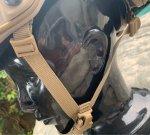 画像11: 米軍実物 OPS-CORE FAST MARITIME  マリタイム ハイカット バリスティック ヘルメット タンL/ XL (11)