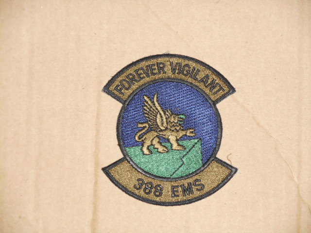 画像1: 米軍実物.USAF 388th Equipment Maintenance Squadron (1)